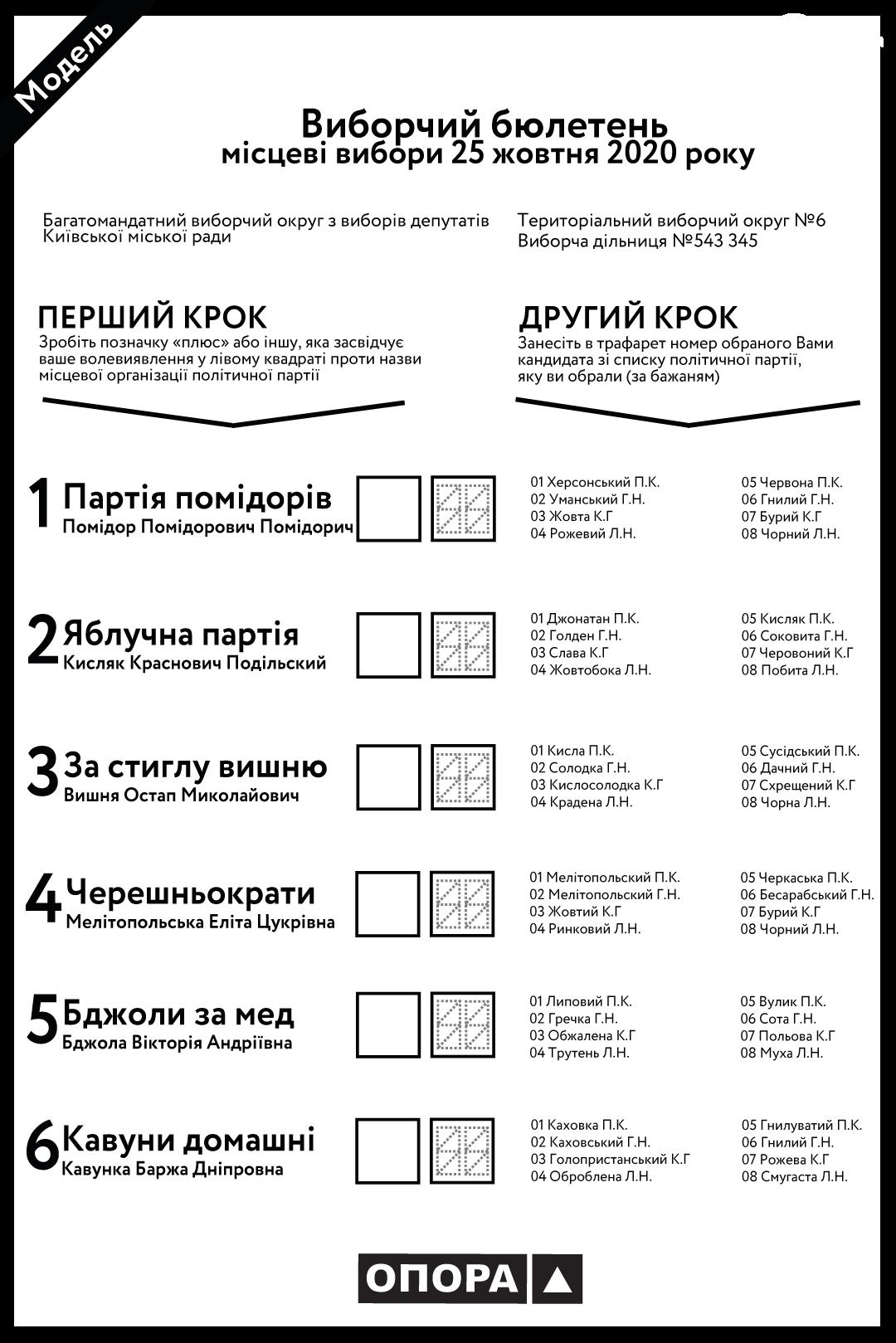Местные выборы-2020. Как заполнить бюллетень нового образца, чтобы голос засчитали, фото-1