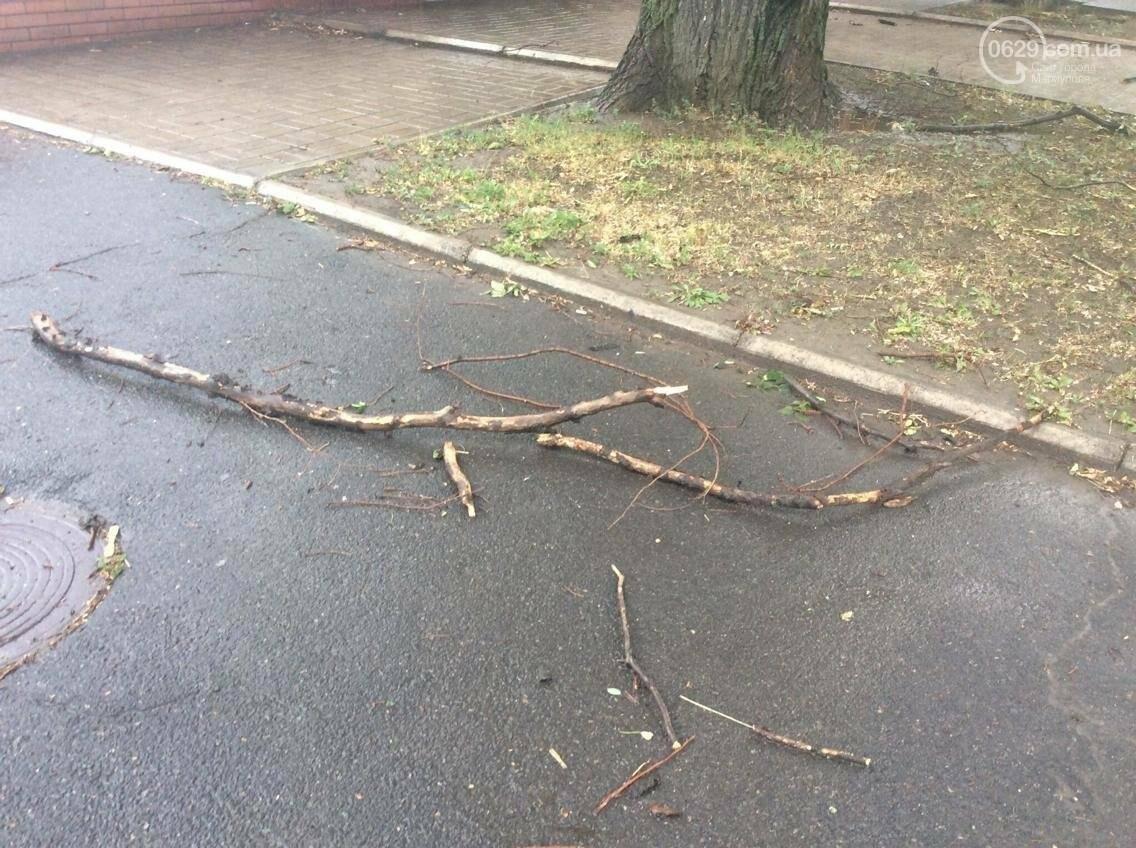 В Мариуполе ураган валил деревья на автомобили, остановки и проезжую часть(ФОТО, ВИДЕО), фото-3