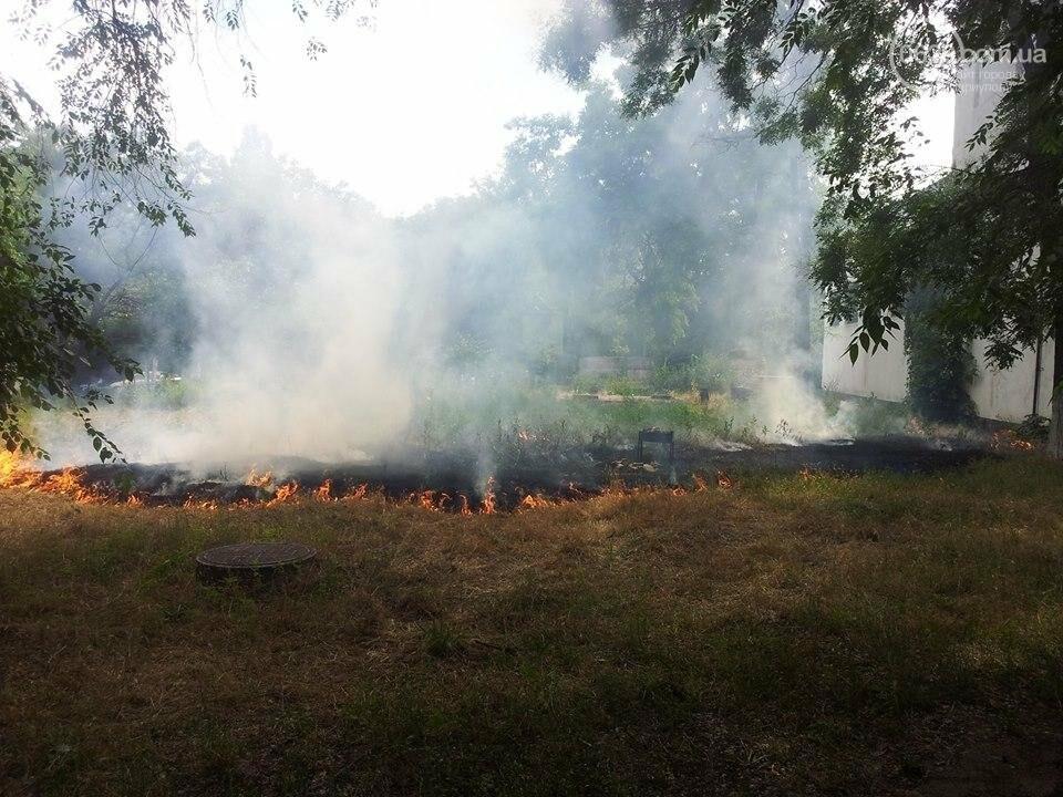 Горячий пикник. В Мариуполе «шашлычники» устроили крупный пожар (ФОТО), фото-1