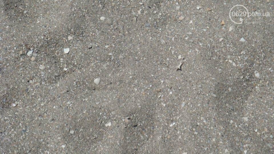 Рейтинг мариупольских пляжей (ФОТО), фото-86