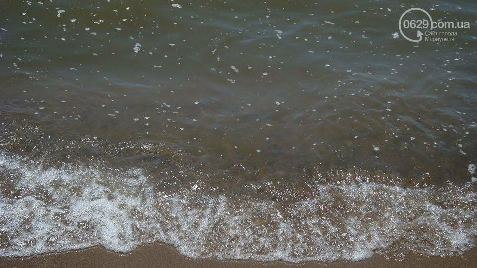 Рейтинг мариупольских пляжей (ФОТО), фото-20
