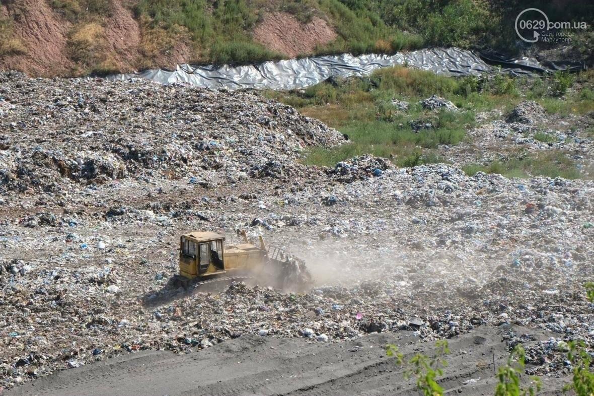 Жебривский пообещал сделать Донецкую область самой чистой в Украине, фото-3