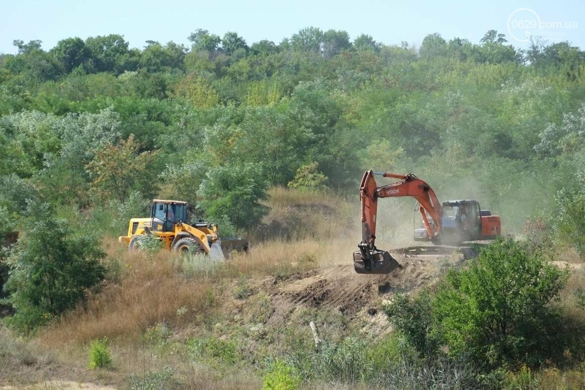 Жебривский пообещал сделать Донецкую область самой чистой в Украине, фото-1