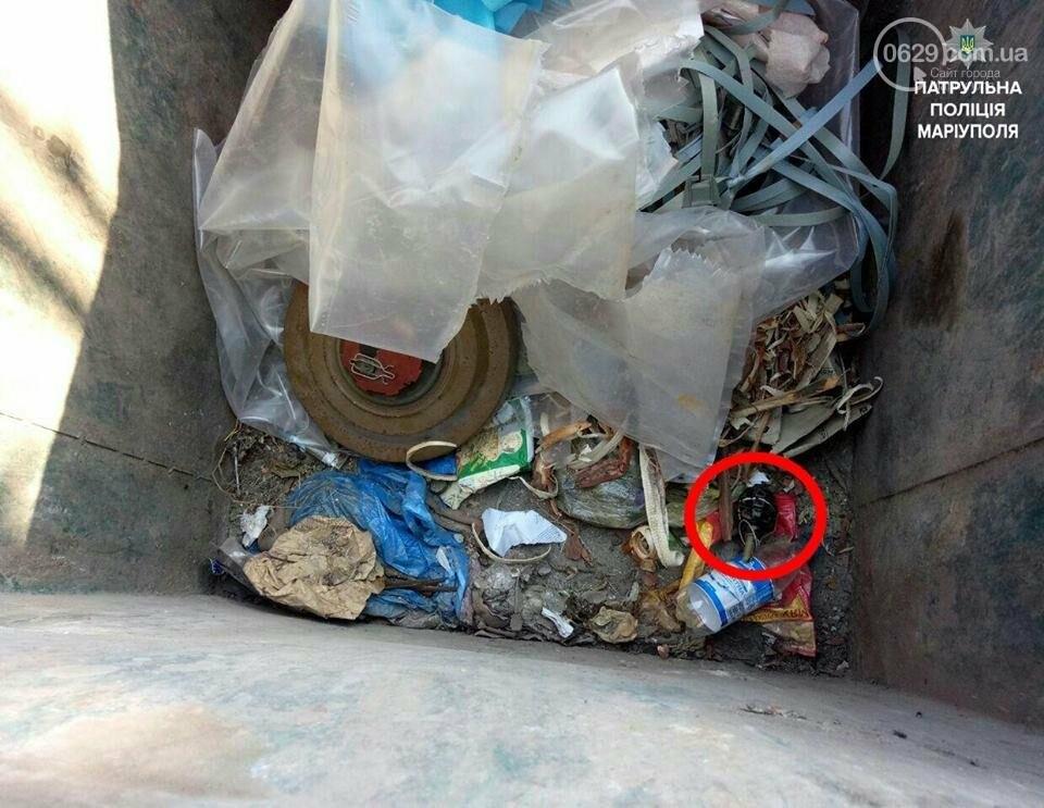 В мусорном баке Мариуполя бомжи нашли гранату и мину (ФОТО), фото-2