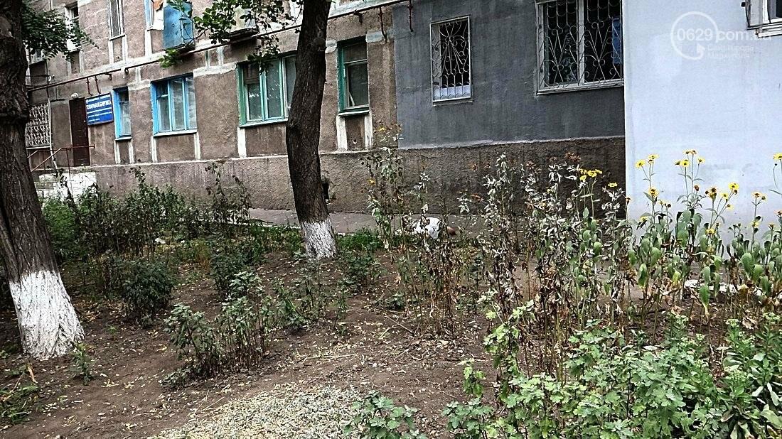 В Мариуполе обвалился балкон. Погиб молодой парень (ФОТО 18+), фото-1