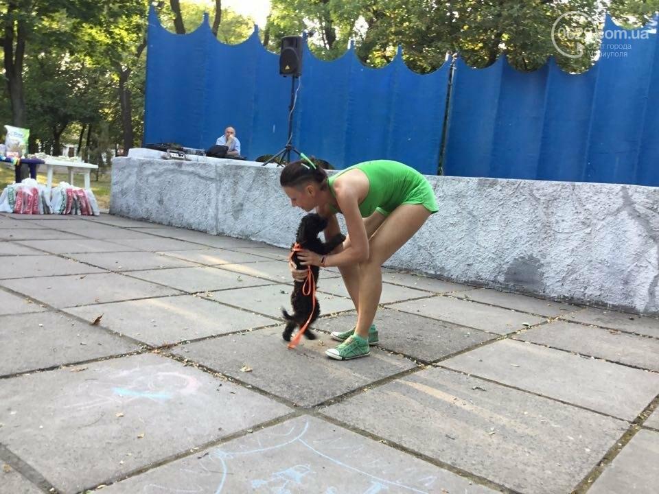 """В Мариуполе выбрали самую красивую """"ДворНяшку 2017"""" (ФОТО+ВИДЕО), фото-7"""