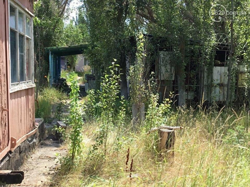 Эхо войны: курортный поселок под Мариуполем оказался забытым (ФОТО), фото-7