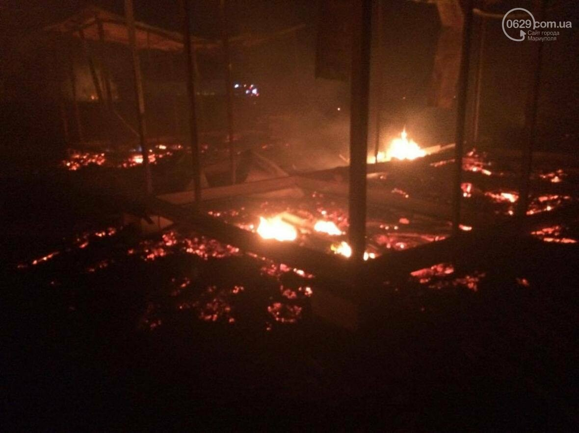 В Мелекино, вблизи пансионатов, горят поля. Люди эвакуируются (ФОТО), фото-4