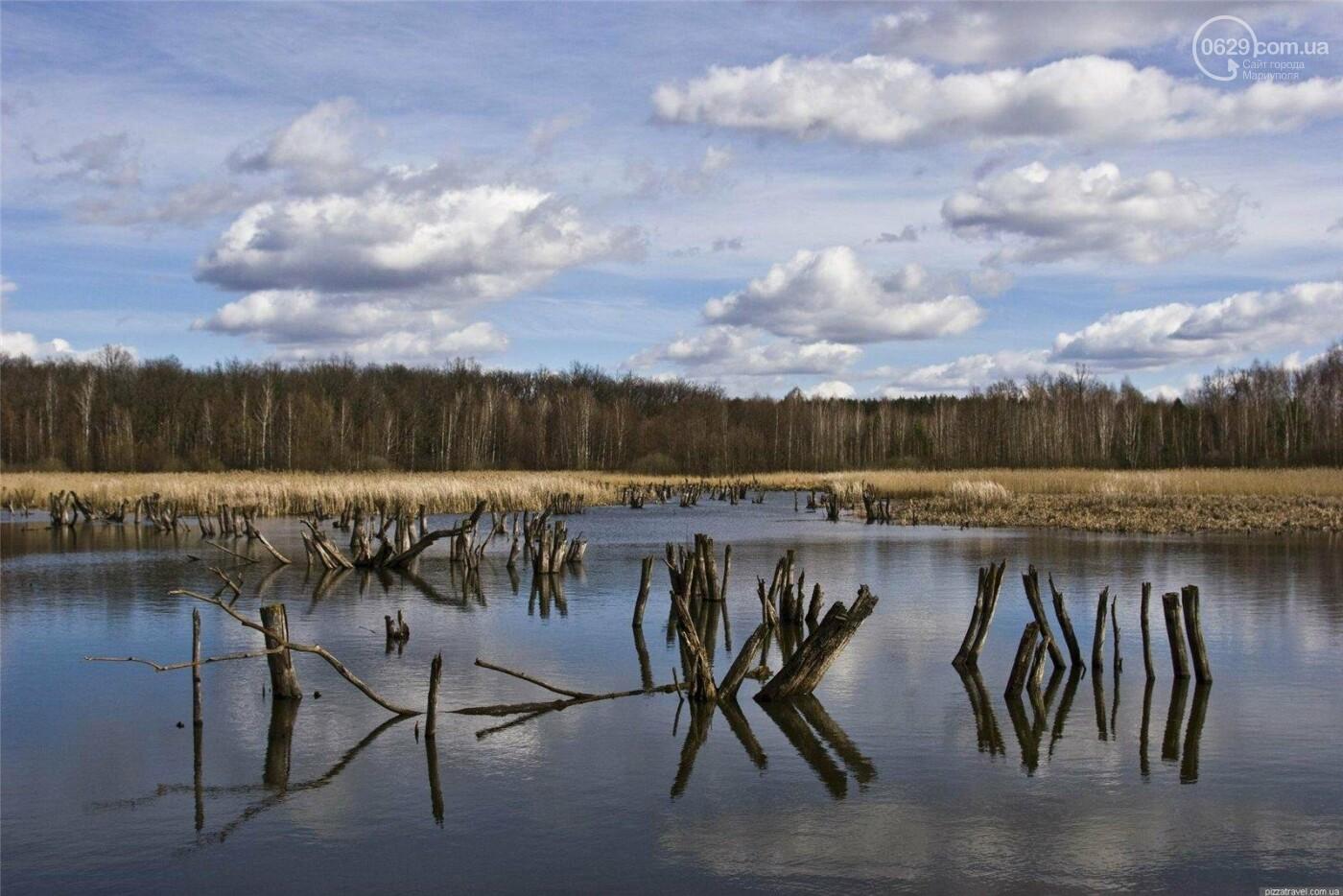 Харьковская область удивит мариупольцев пустыней, соленым озером и дендропарком, фото-6