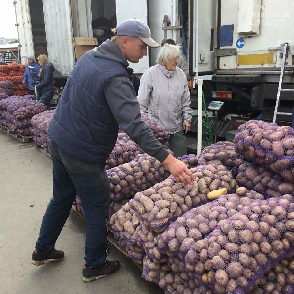 Осторожно, картофель! Стало известно, где в Мариуполе продают овощи без нитратов, фото-9
