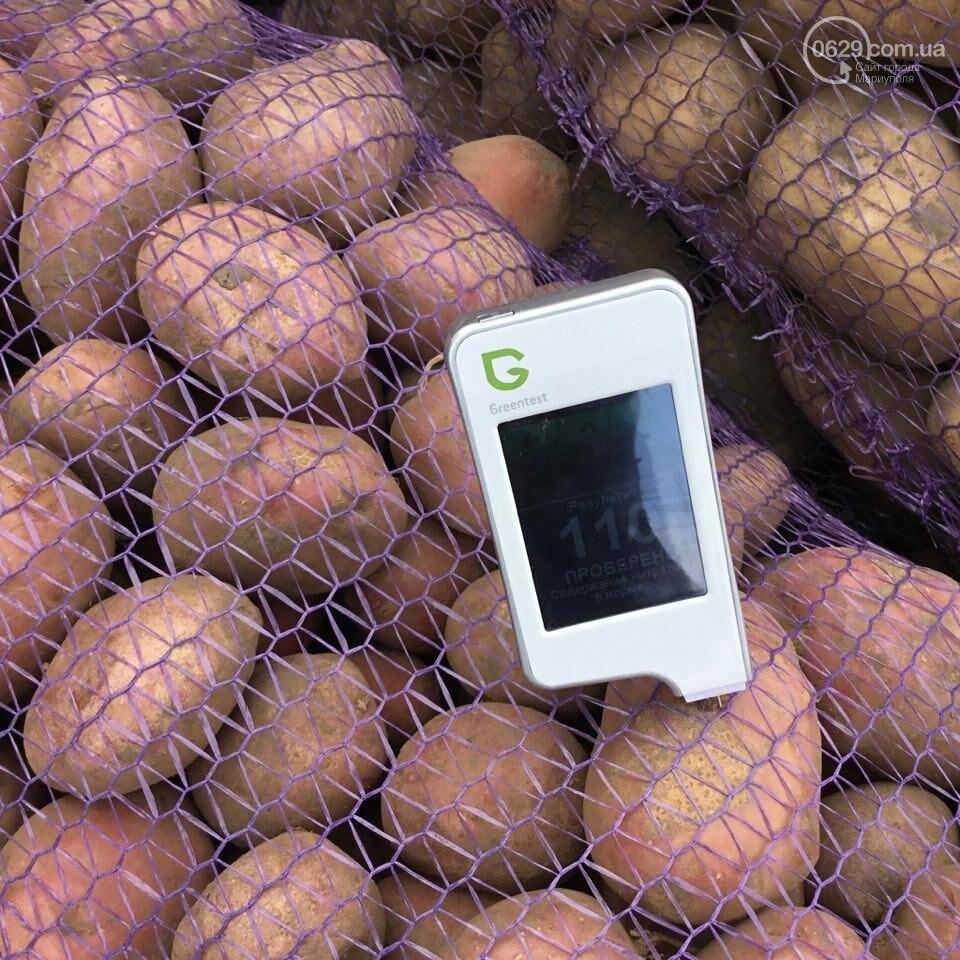 Осторожно, картофель! Стало известно, где в Мариуполе продают овощи без нитратов, фото-10