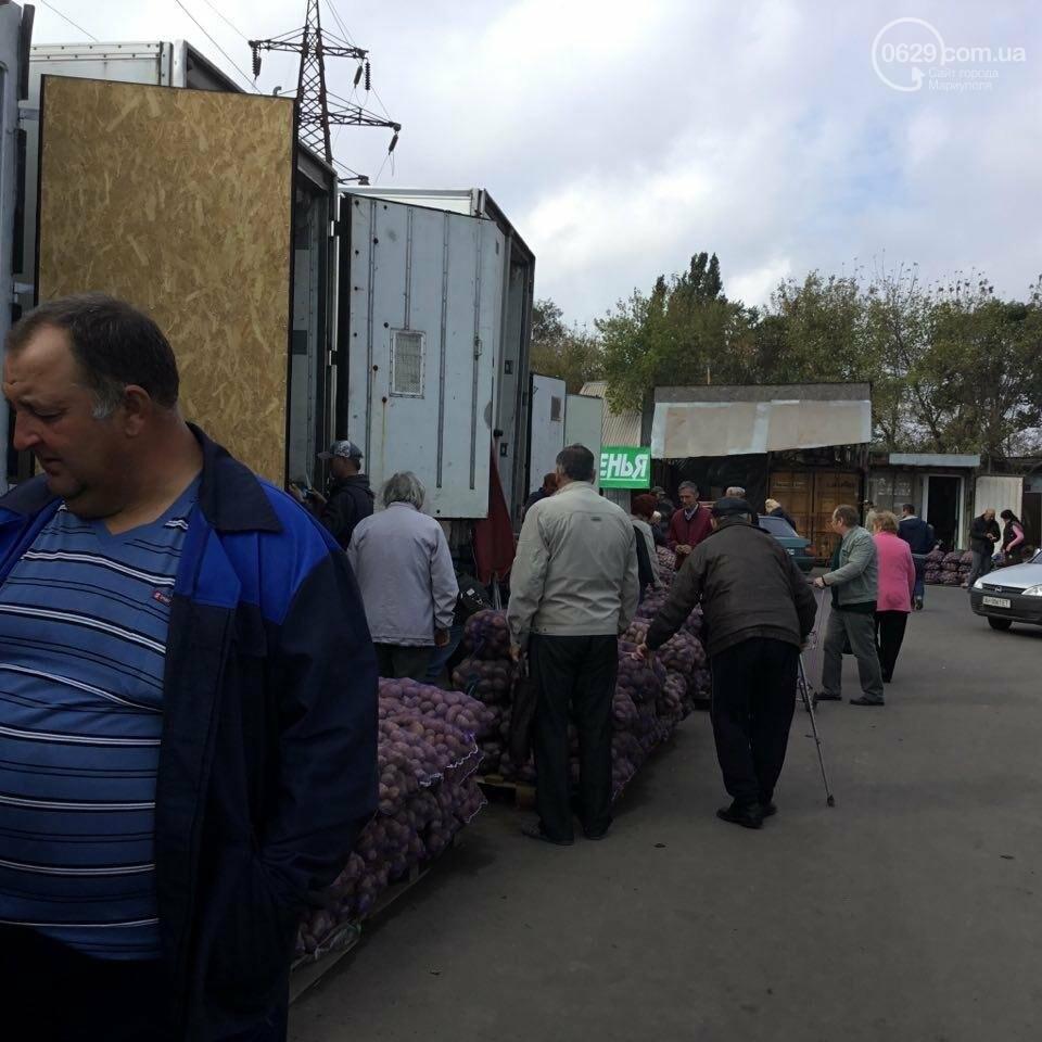 Осторожно, картофель! Стало известно, где в Мариуполе продают овощи без нитратов, фото-7