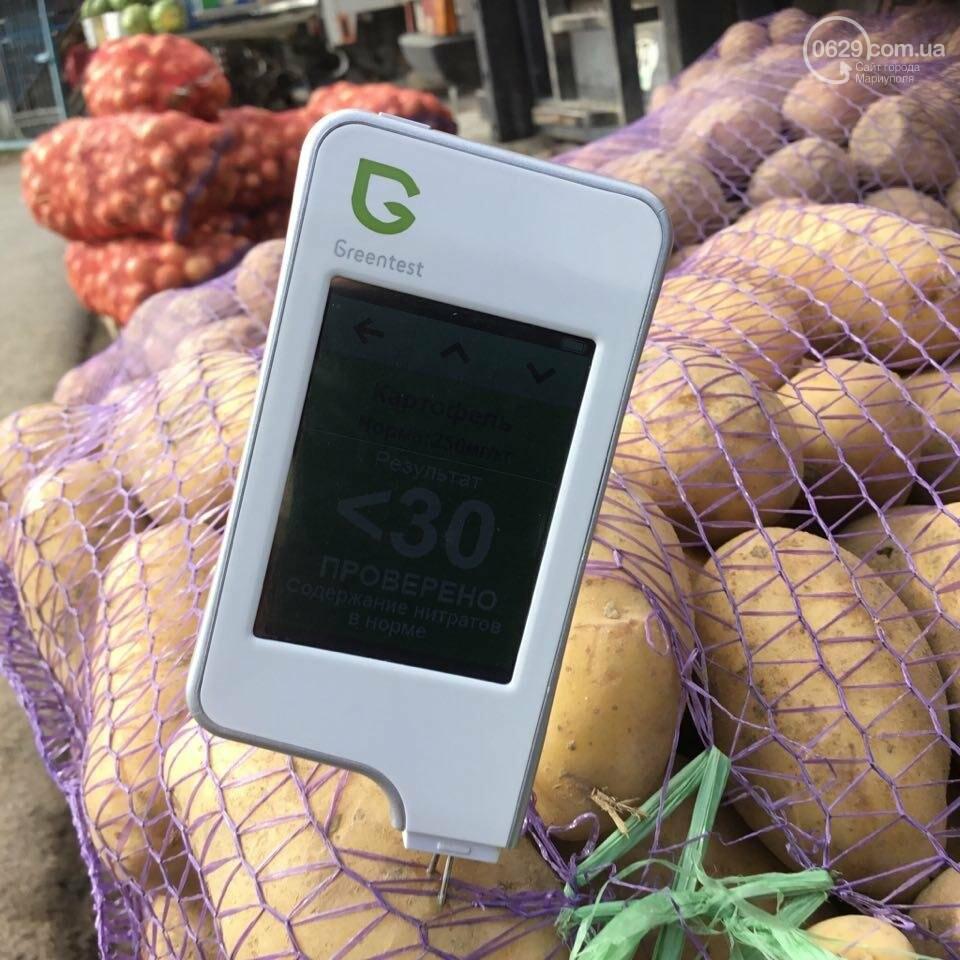 Осторожно, картофель! Стало известно, где в Мариуполе продают овощи без нитратов, фото-12