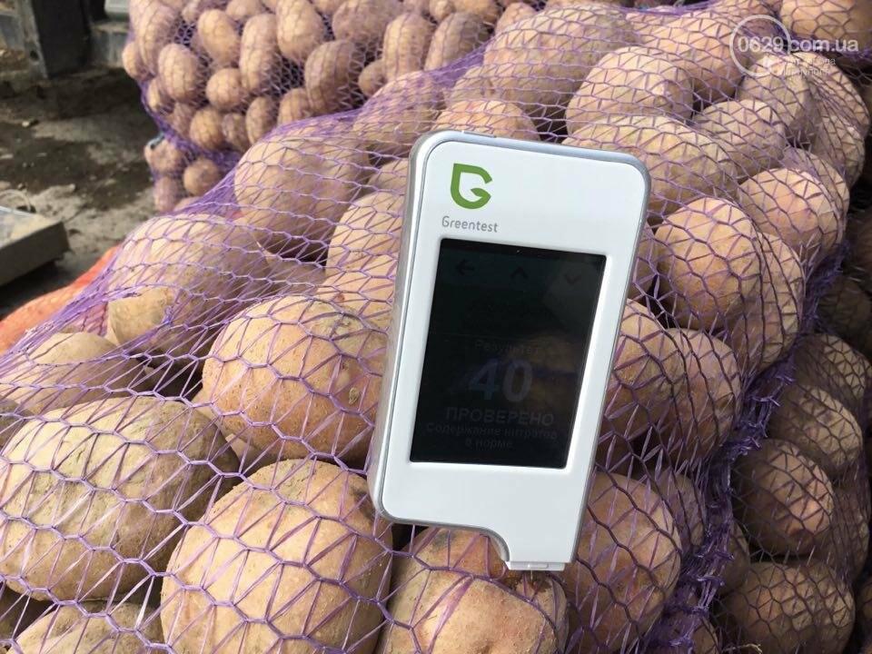 Осторожно, картофель! Стало известно, где в Мариуполе продают овощи без нитратов, фото-13