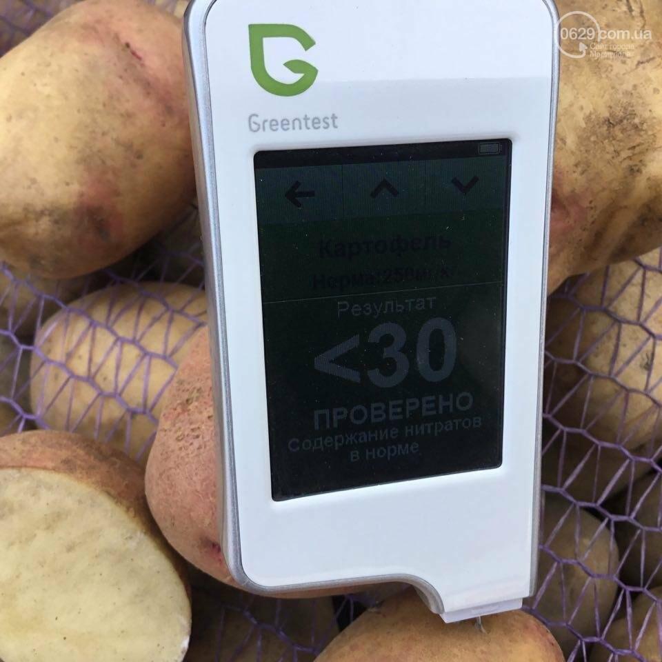 Осторожно, картофель! Стало известно, где в Мариуполе продают овощи без нитратов, фото-8