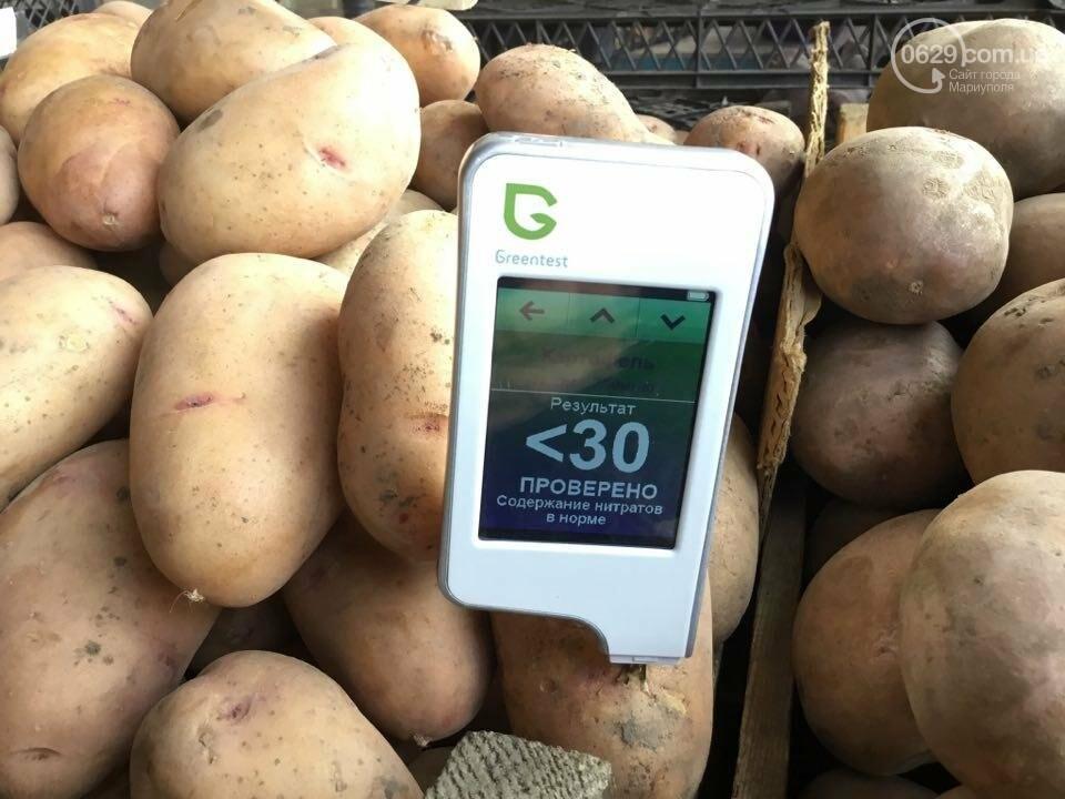 Осторожно, картофель! Стало известно, где в Мариуполе продают овощи без нитратов, фото-25