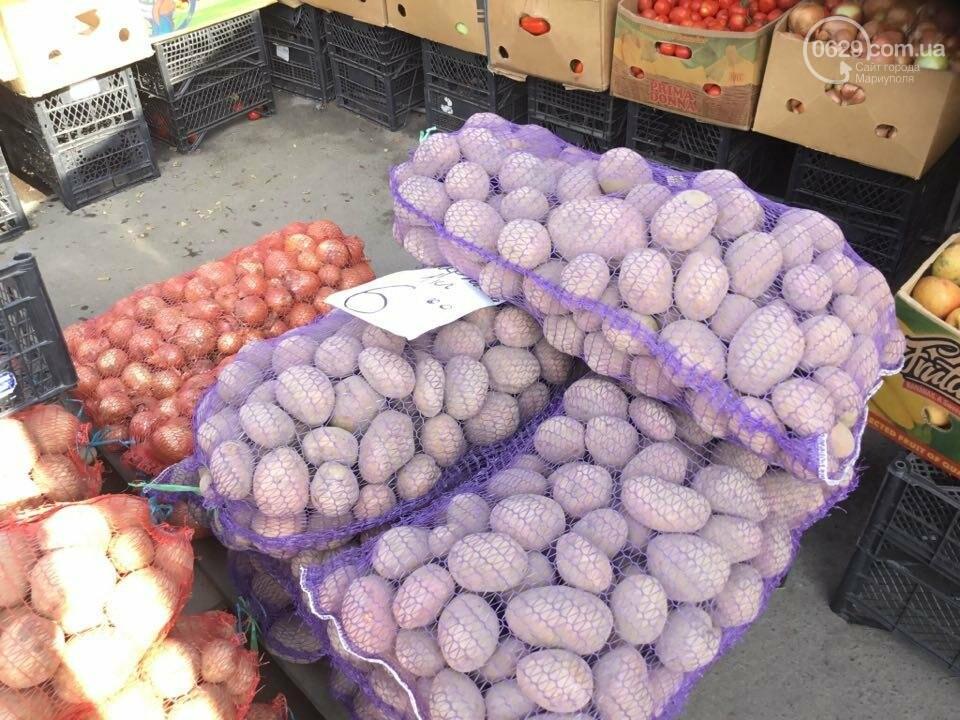 Осторожно, картофель! Стало известно, где в Мариуполе продают овощи без нитратов, фото-47
