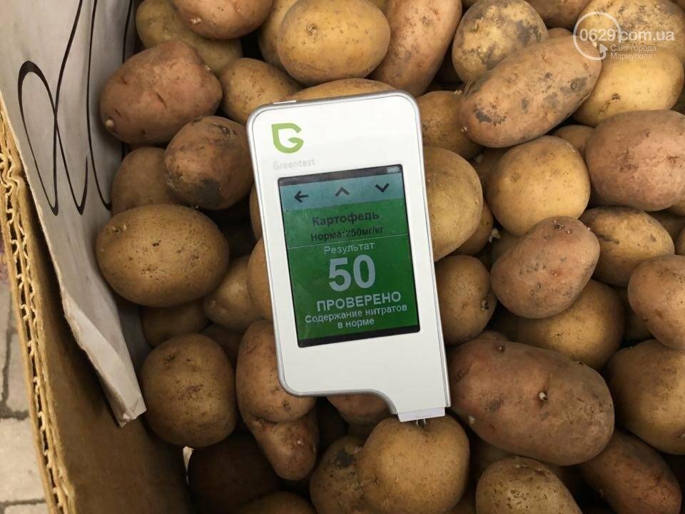 Осторожно, картофель! Стало известно, где в Мариуполе продают овощи без нитратов, фото-56