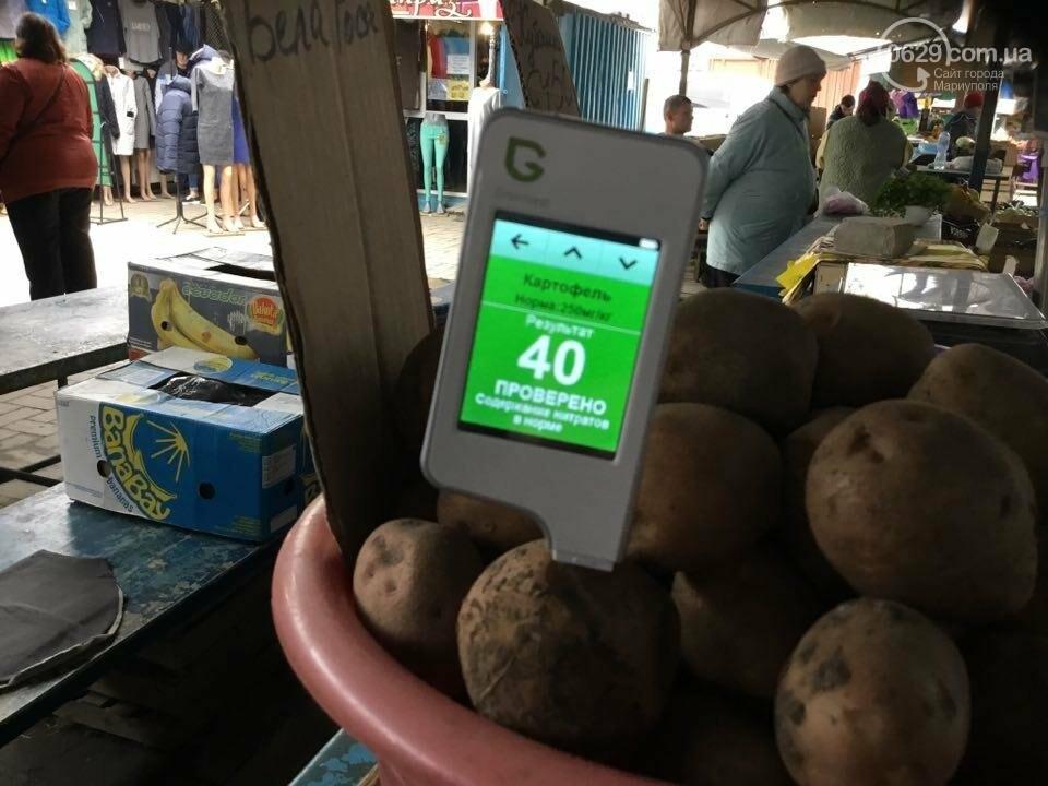 Осторожно, картофель! Стало известно, где в Мариуполе продают овощи без нитратов, фото-58