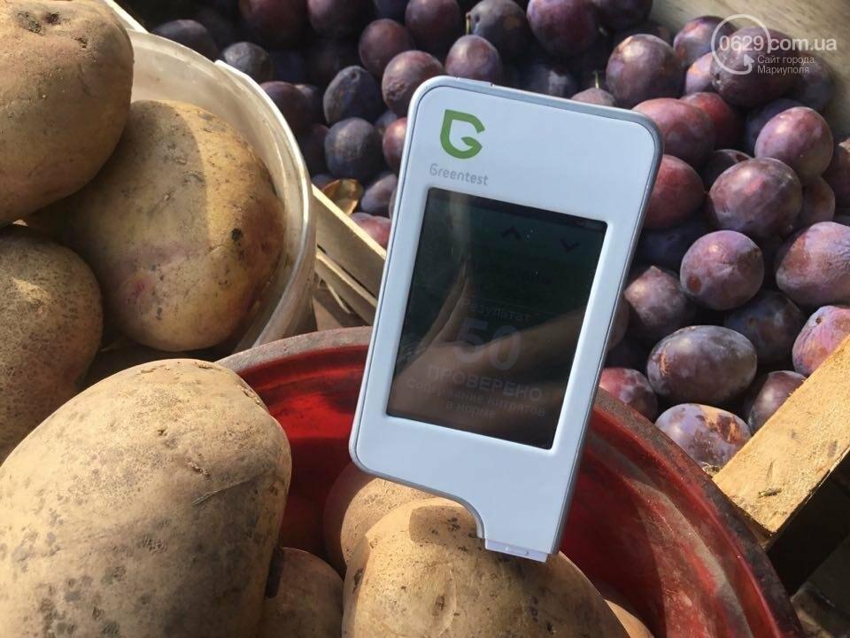 Осторожно, картофель! Стало известно, где в Мариуполе продают овощи без нитратов, фото-76