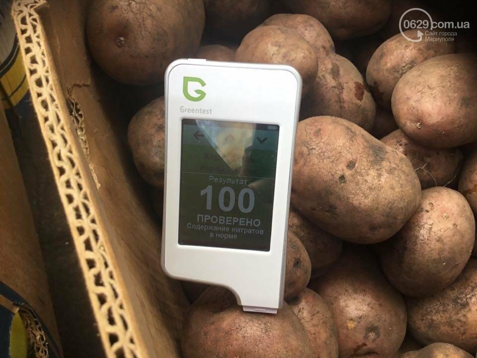 Осторожно, картофель! Стало известно, где в Мариуполе продают овощи без нитратов, фото-77