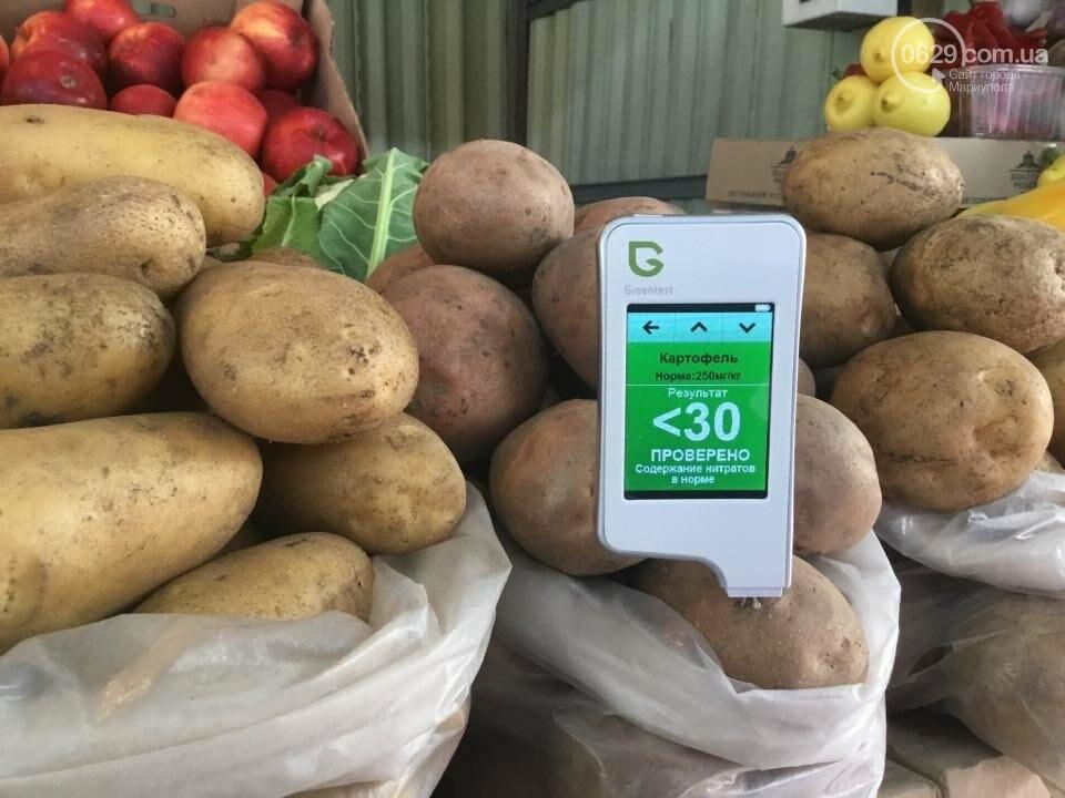 Осторожно, картофель! Стало известно, где в Мариуполе продают овощи без нитратов, фото-89