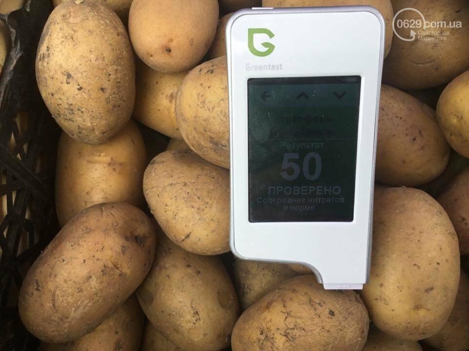Осторожно, картофель! Стало известно, где в Мариуполе продают овощи без нитратов, фото-81