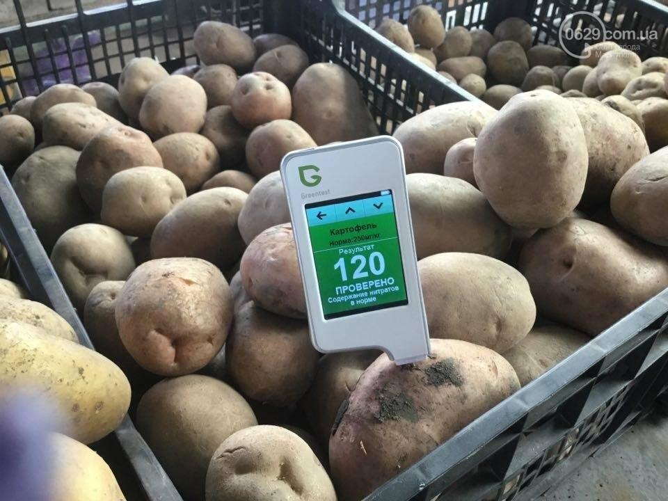 Осторожно, картофель! Стало известно, где в Мариуполе продают овощи без нитратов, фото-109