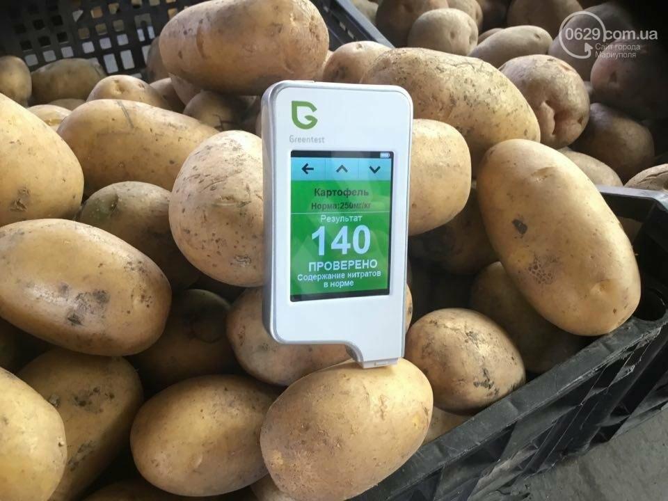 Осторожно, картофель! Стало известно, где в Мариуполе продают овощи без нитратов, фото-112