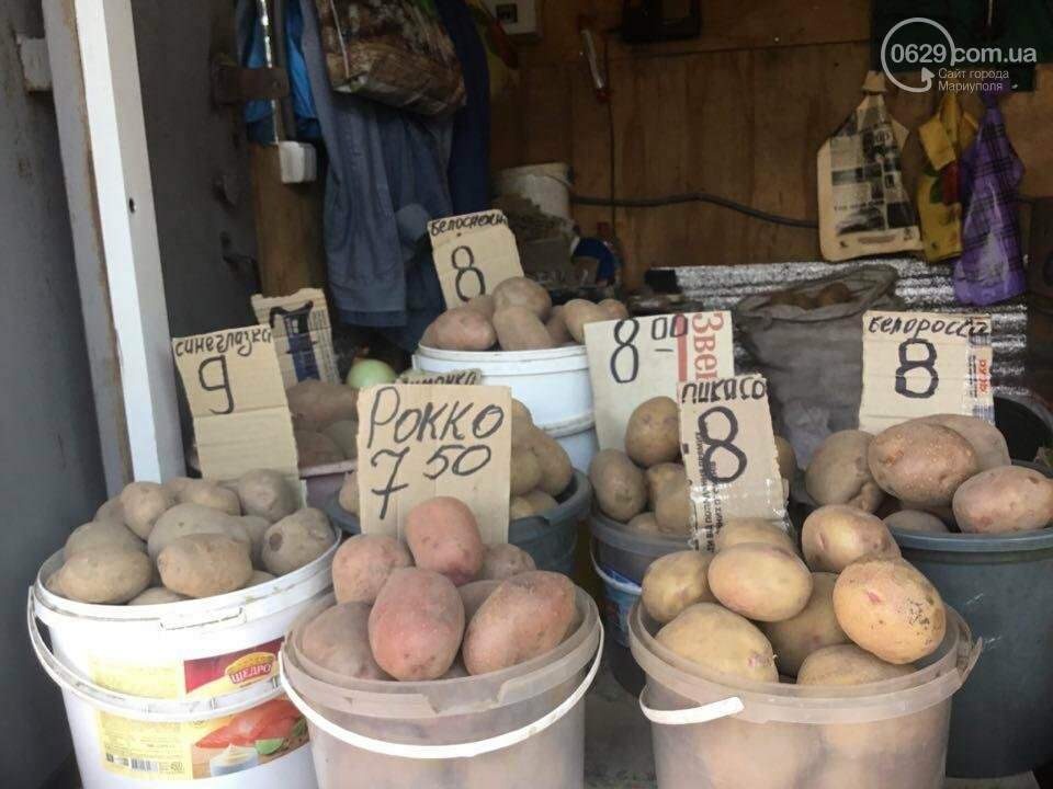 Осторожно, картофель! Стало известно, где в Мариуполе продают овощи без нитратов, фото-106