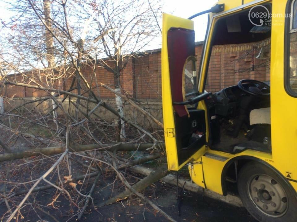 В Мариуполе маршрутка врезалась в дерево. Пострадали около 10 человек (ФОТО, ВИДЕО), фото-2