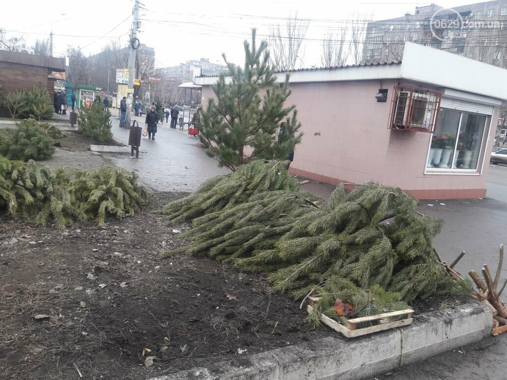 В Мариуполе обнаружили  нелегальных  торговцев хвоей (ФОТОФАКТ), фото-1