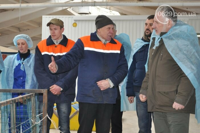 Бывший шахтер-переселенец получил грант и открыл козью ферму в Боевом, фото-1