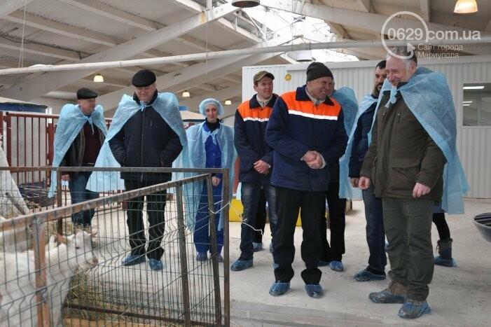 Бывший шахтер-переселенец получил грант и открыл козью ферму в Боевом, фото-2