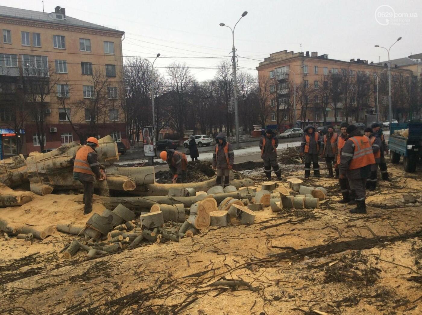 На Греческой площади Мариуполя срубили несколько многолетних тополей (ФОТО, ВИДЕО), фото-1