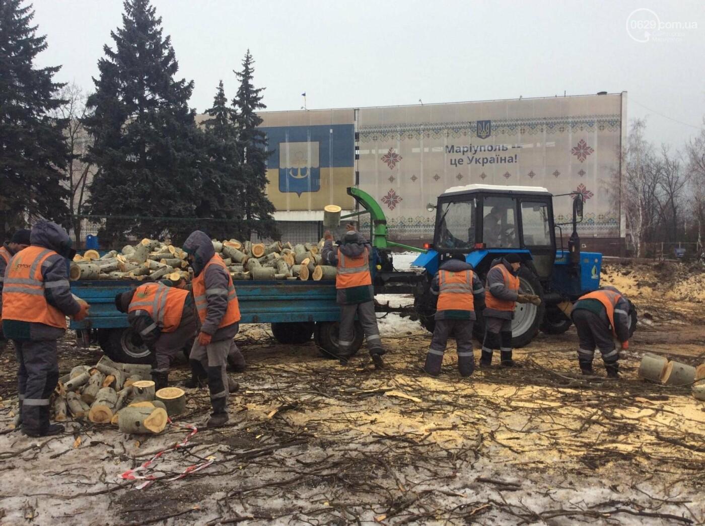 На Греческой площади Мариуполя срубили несколько многолетних тополей (ФОТО, ВИДЕО), фото-7