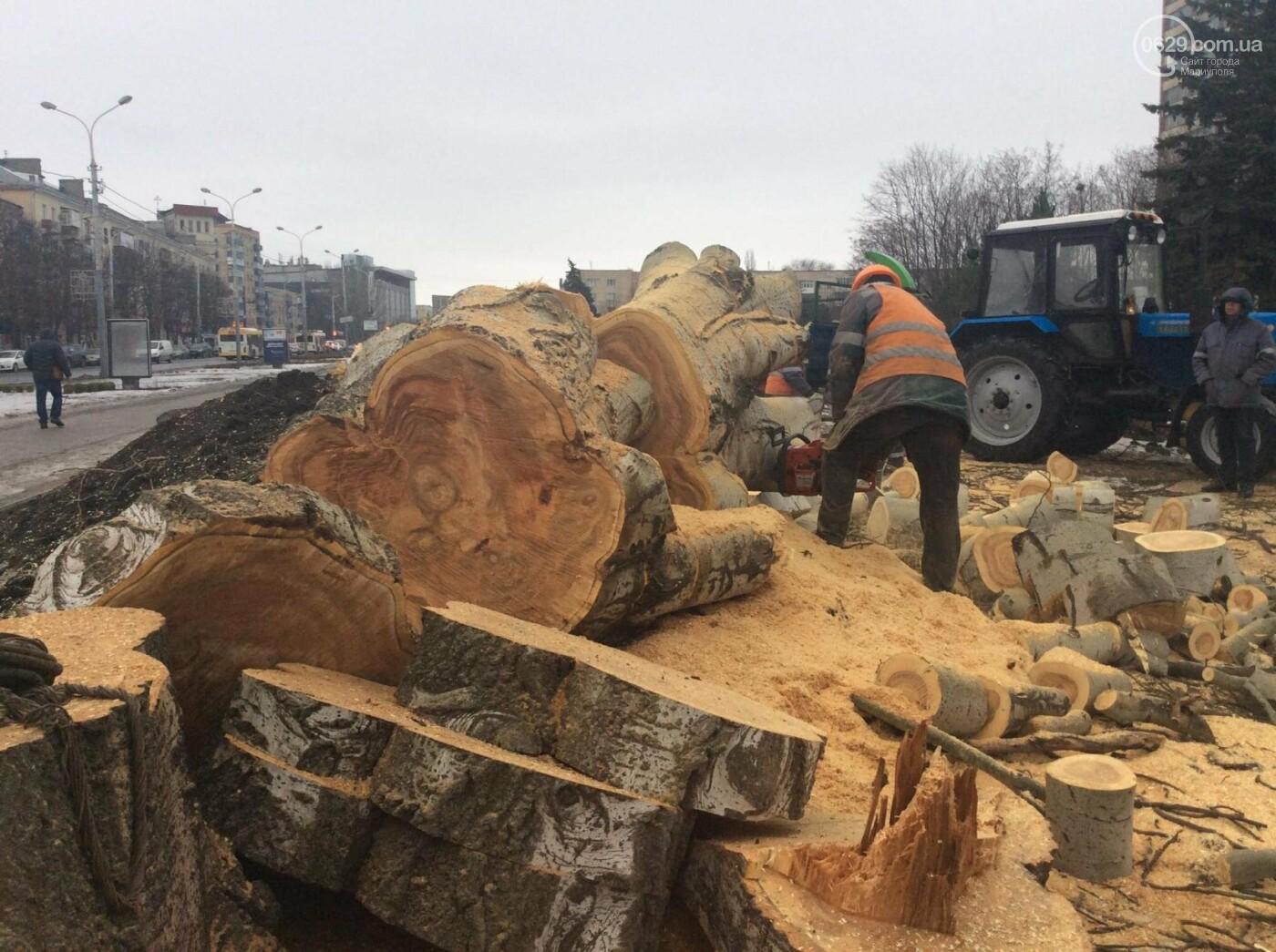 На Греческой площади Мариуполя срубили несколько многолетних тополей (ФОТО, ВИДЕО), фото-5