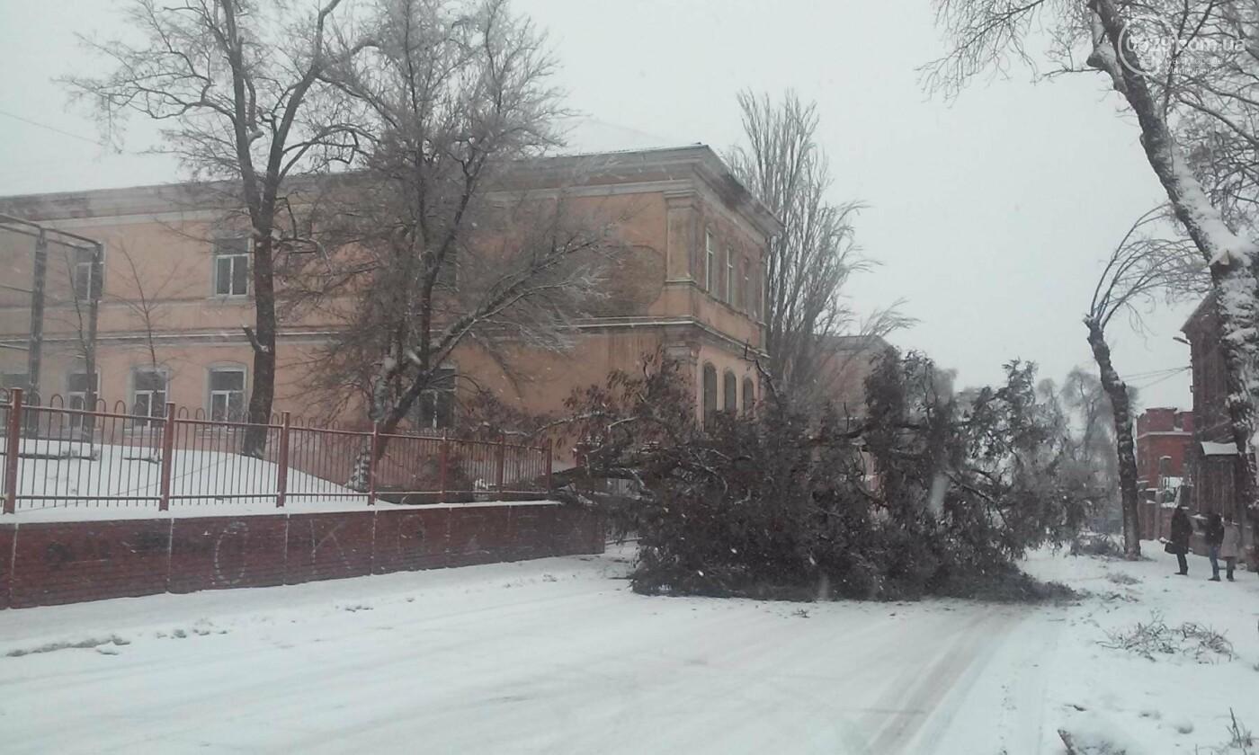 Ледяной плен свалил на дорогу десятки деревьев и обесточил тысячи домов (ФОТО+ВИДЕО), фото-6