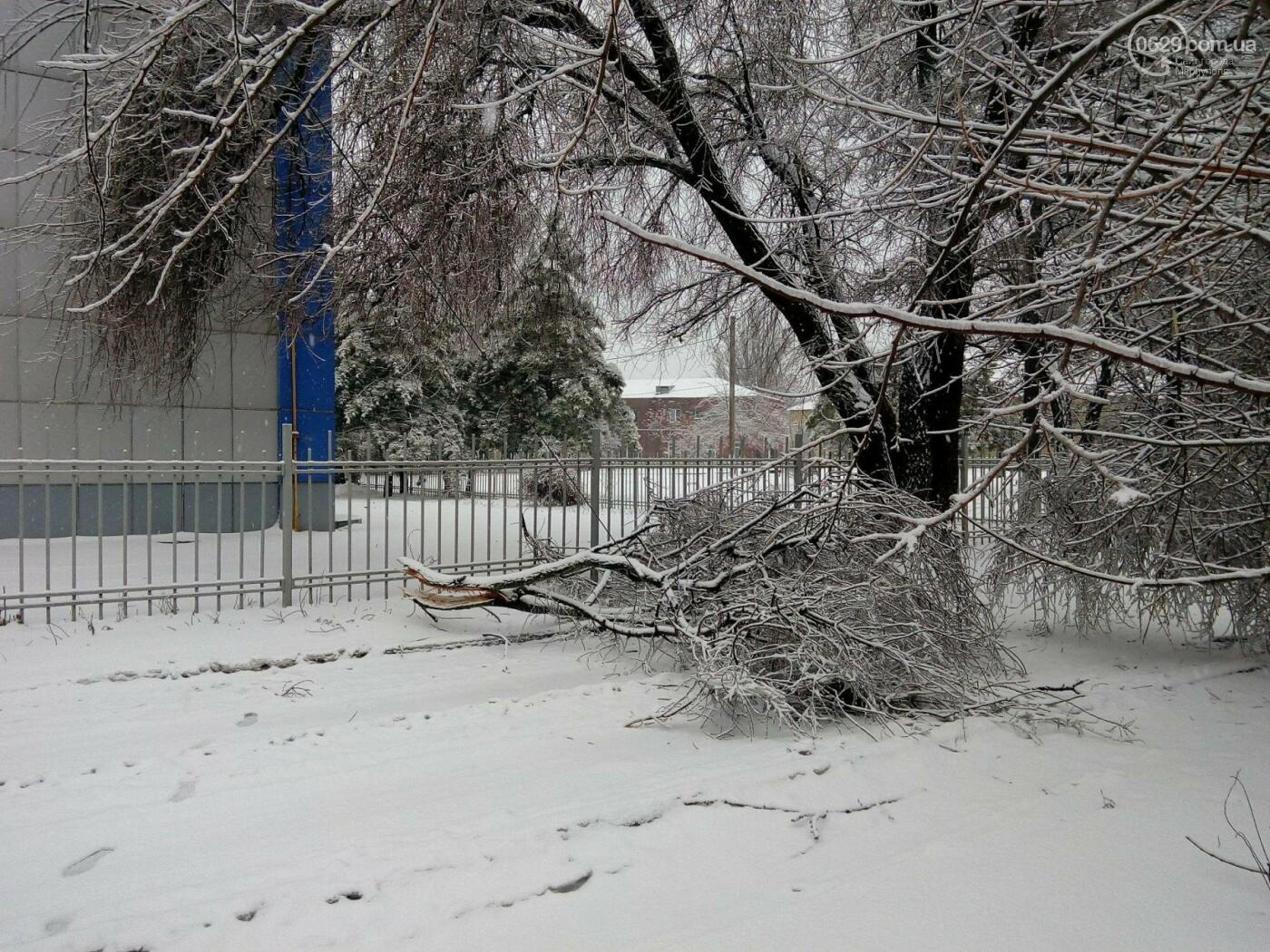 Ледяной плен свалил на дорогу десятки деревьев и обесточил тысячи домов (ФОТО+ВИДЕО), фото-7