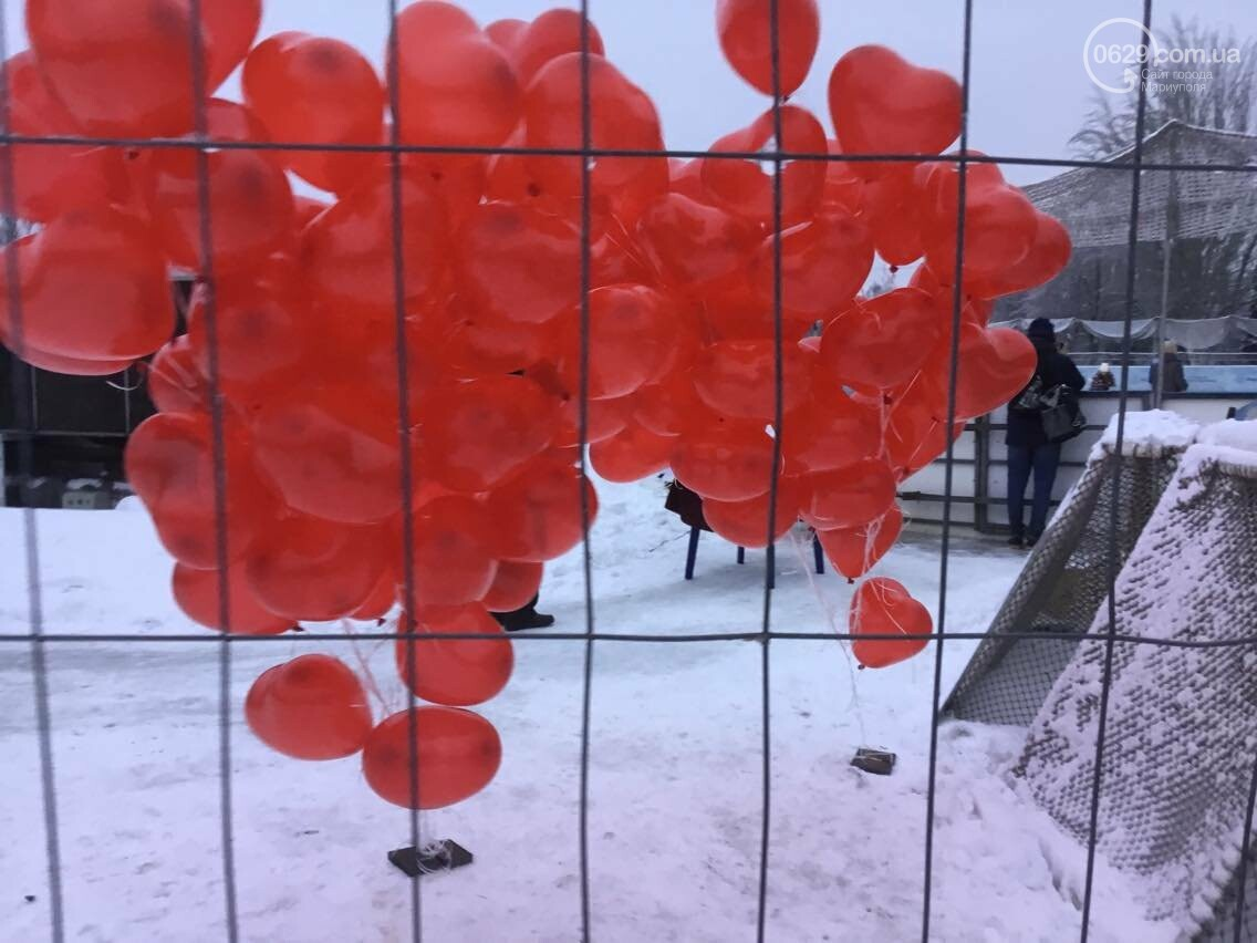 В Мариуполе  молодоженов расписали на льду (ФОТО, ВИДЕО), фото-3