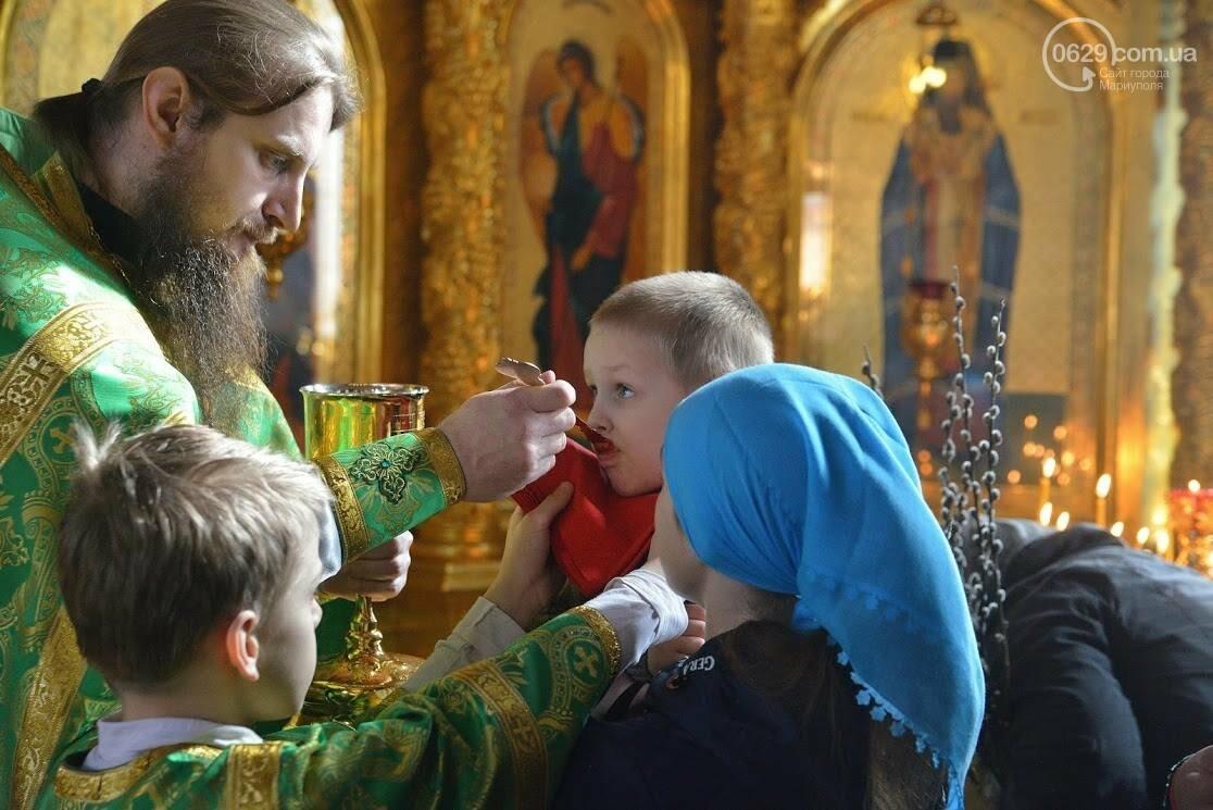 Вербное воскресенье в Свято-Покровском храме с.Боевое, фото-13