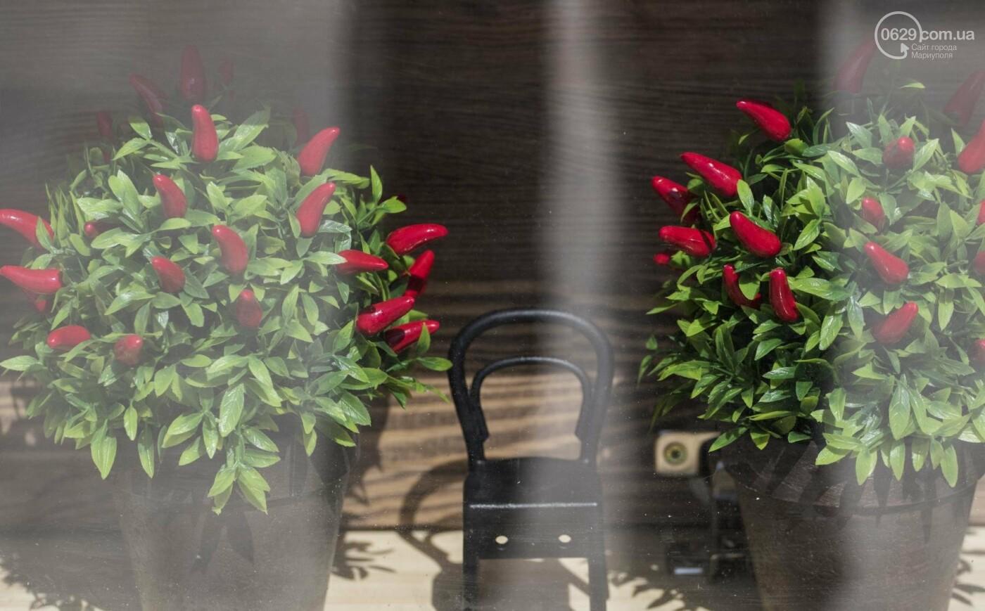Весеннее солнце оживило Мариуполь (ФОТОРЕПОРАЖ), фото-1