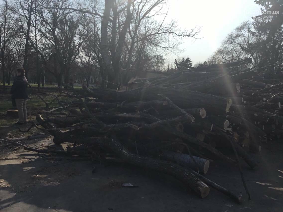 """Мариупольцам рассказали, каким  будет парк """"Веселка"""" (ФОТО, ВИДЕО), фото-5"""