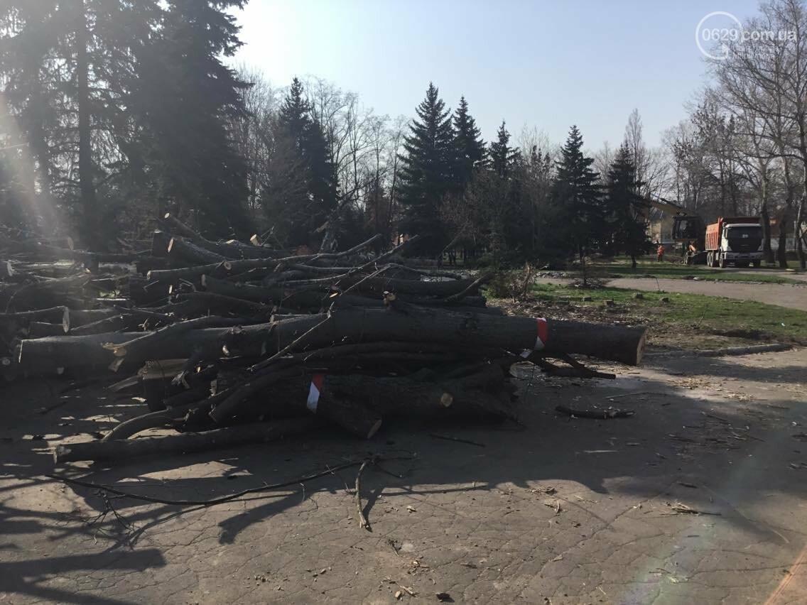 """Мариупольцам рассказали, каким  будет парк """"Веселка"""" (ФОТО, ВИДЕО), фото-8"""