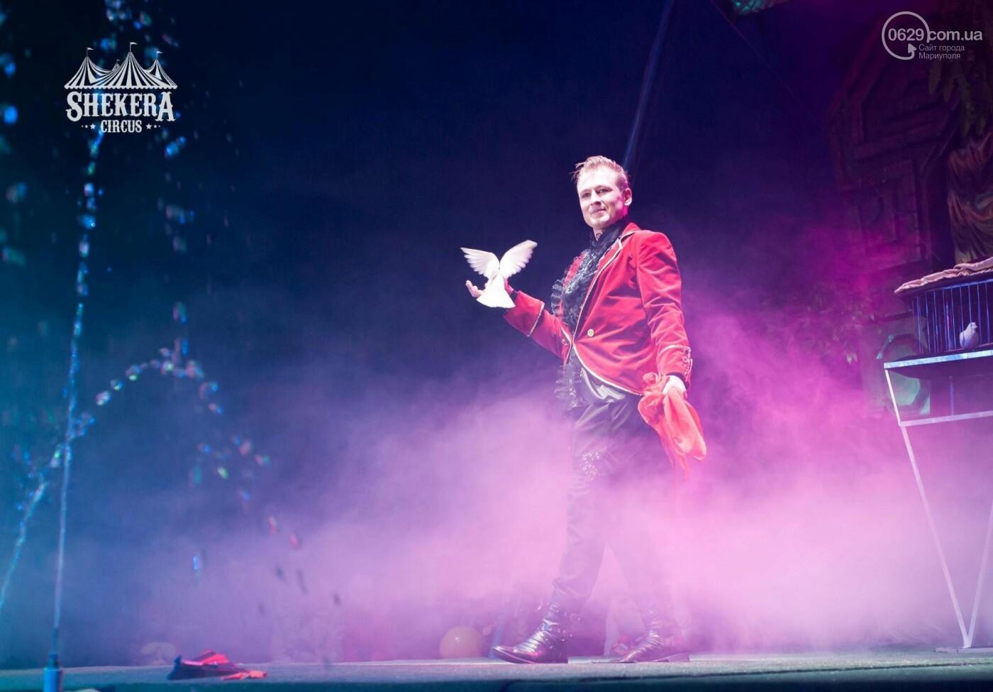 """Вперше у Маріуполі! Зустрічайте цирк """"Shekera"""" з новою програмою """"Alazana"""", фото-1"""