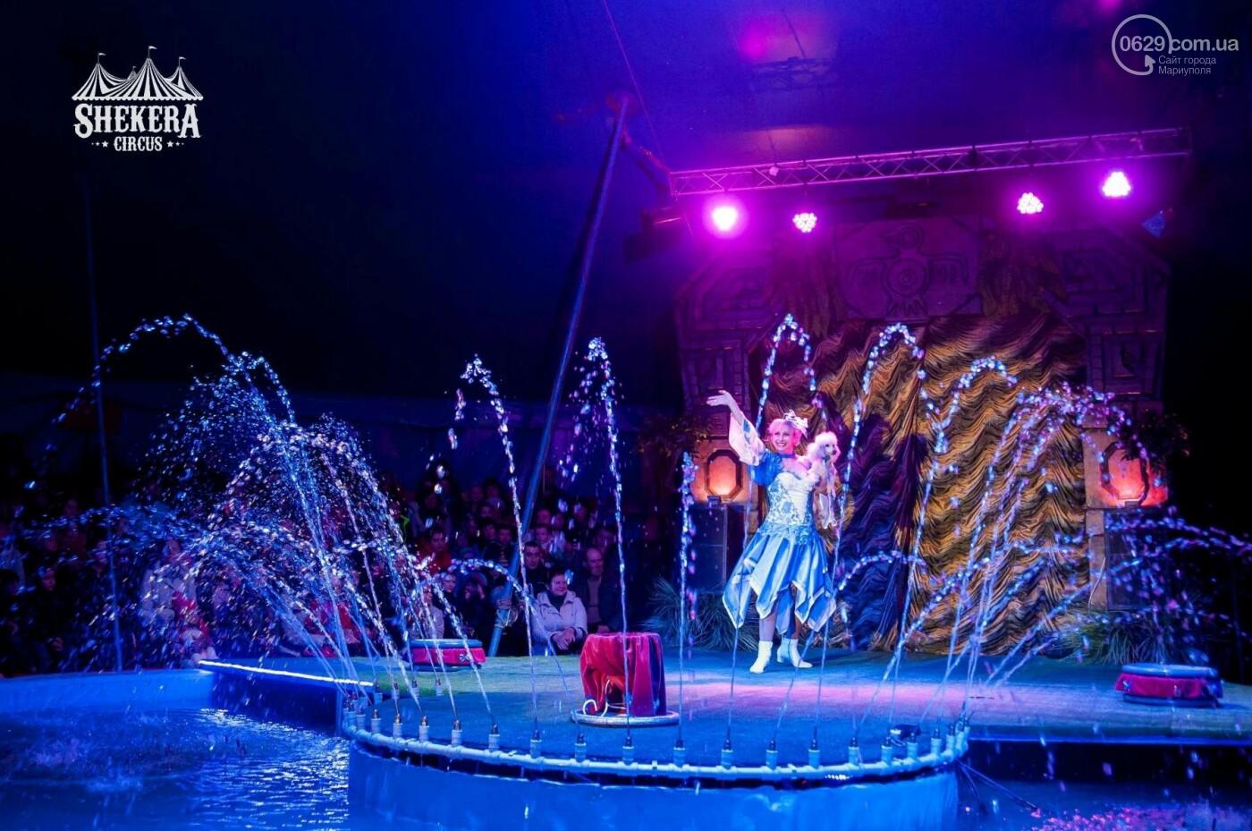 """Вперше у Маріуполі! Зустрічайте цирк """"Shekera"""" з новою програмою """"Alazana"""", фото-2"""