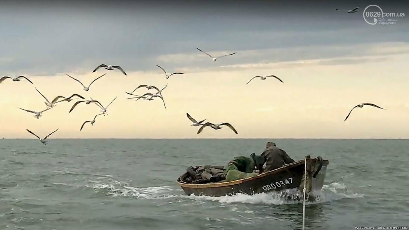 Море продолжает кормить переселенцев из Широкино (ФОТО), фото-3