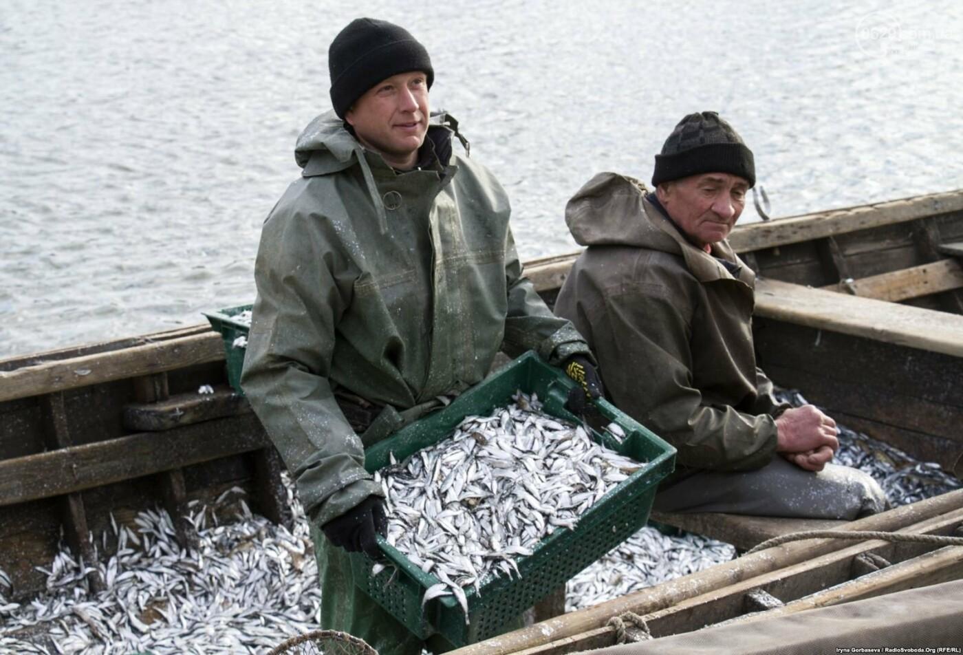 Море продолжает кормить переселенцев из Широкино (ФОТО), фото-4