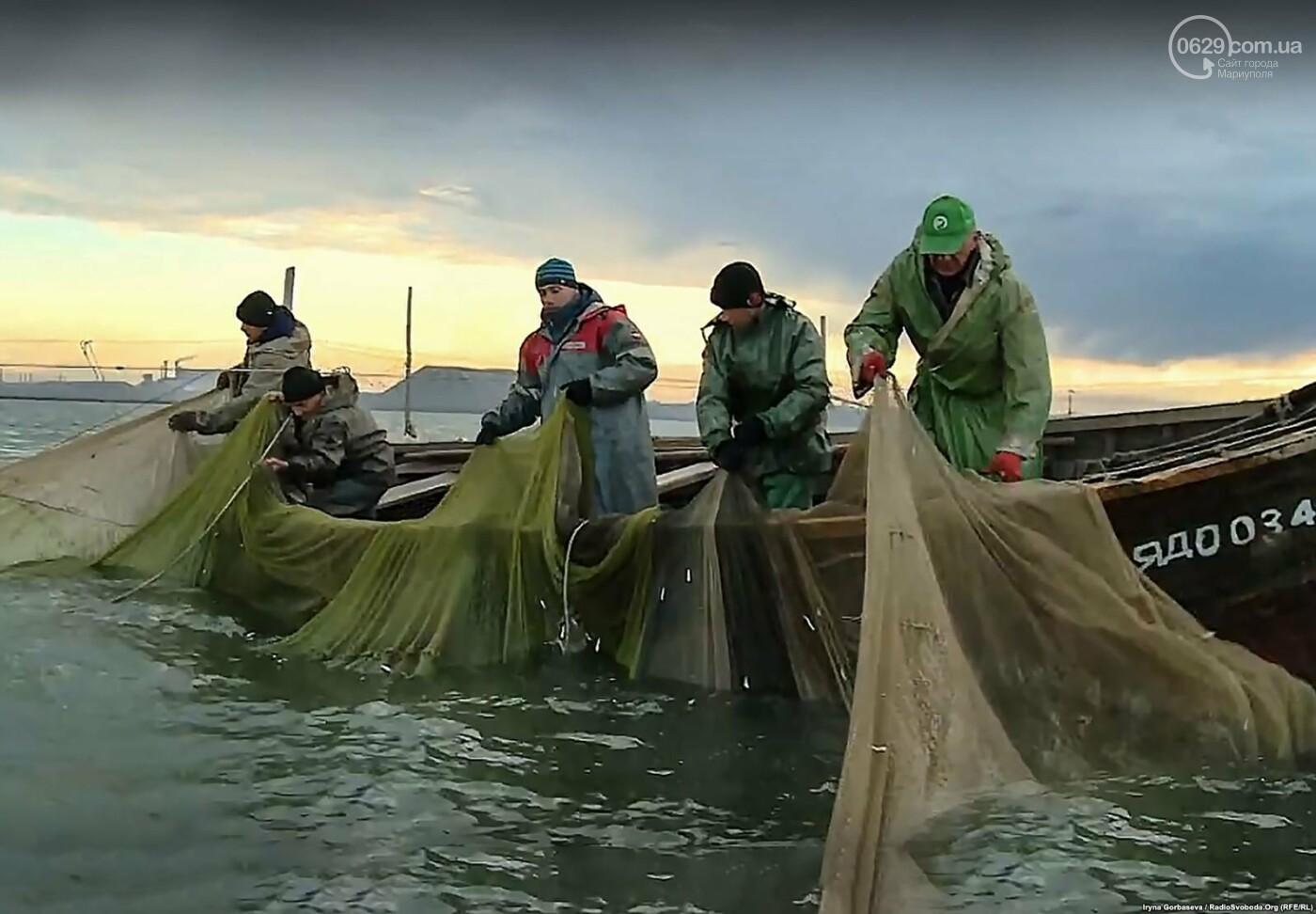 Море продолжает кормить переселенцев из Широкино (ФОТО), фото-1