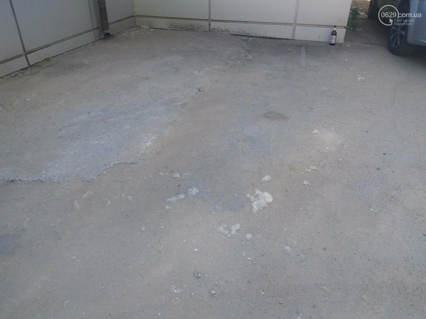 В Мариуполе раньше времени появился тополиный пух (Фотофакт), фото-5